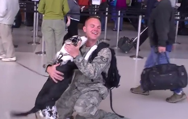 soldier-dog-video.jpg