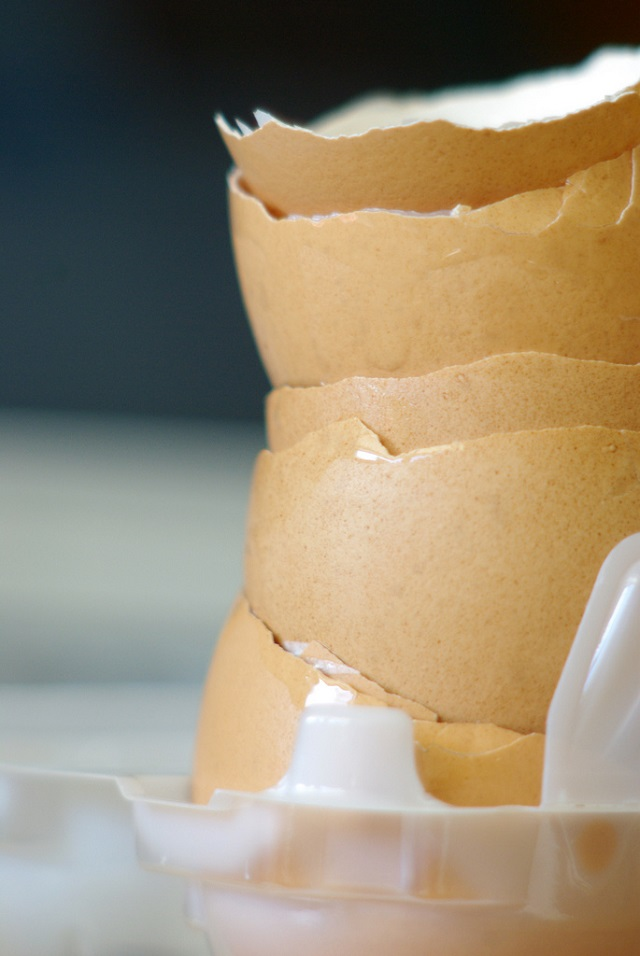 Why you should never throw out eggshells