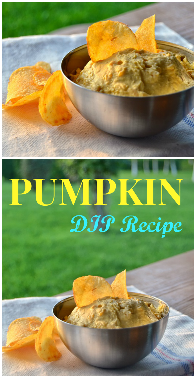 Pumpkin DIP Recipe - a must-try