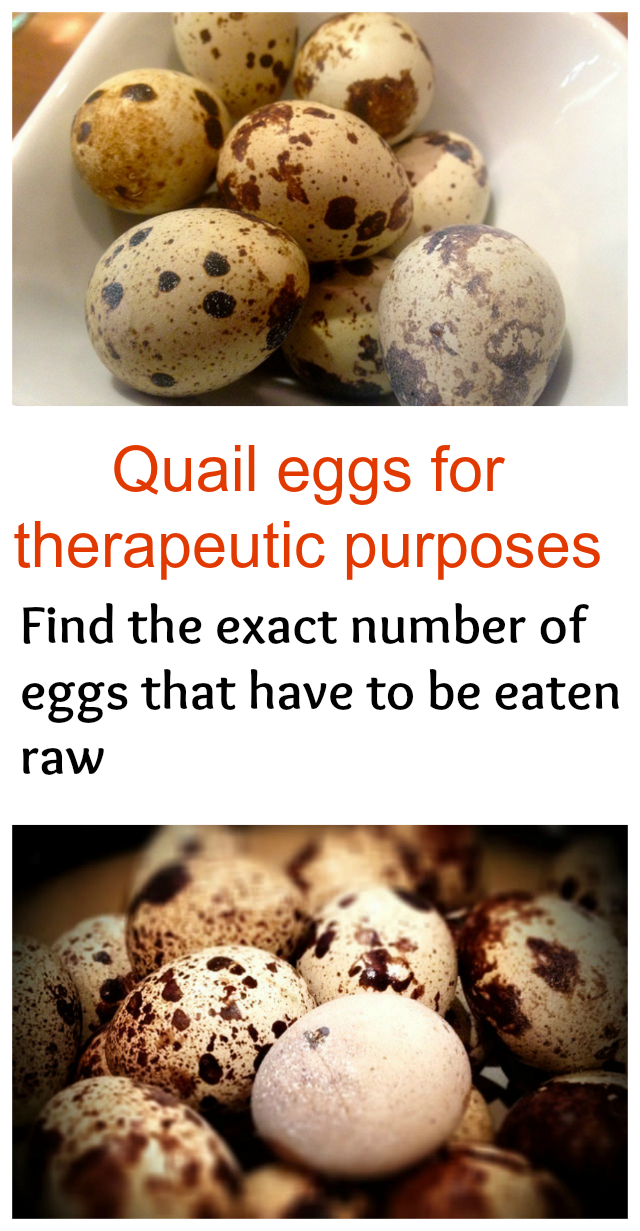 Quail eggs for therapeutic purposes  - Find the exact number of eggs that have to be eaten raw