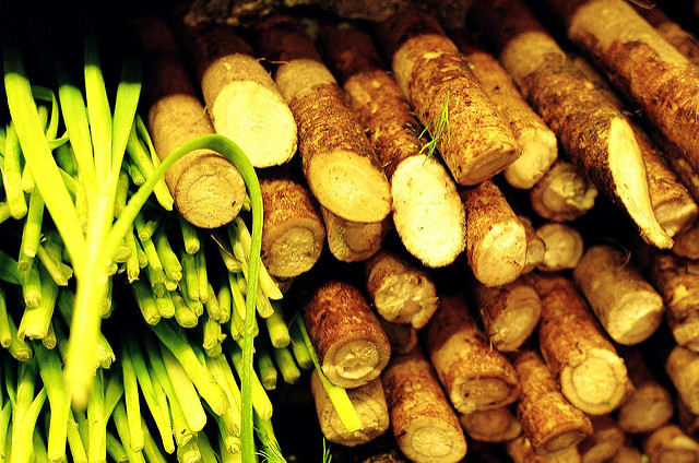 Burdock root, a natural medicine that cures rheumatism and reduces glycaemia