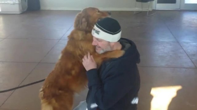 Long lost dog reunited with family after 20 months of separation!
