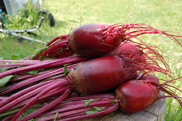 10 reasons why you should introduce red beets into your daily diet