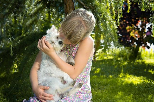 Children and animals: how dangerous is animal hair?