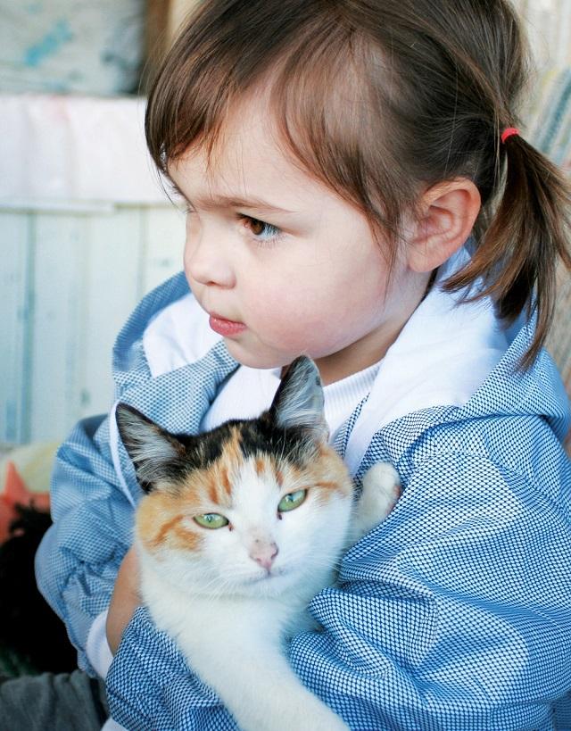 Is cat hair dangerous for children?