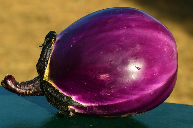 Eggplant, a versatile and healthy vegetable