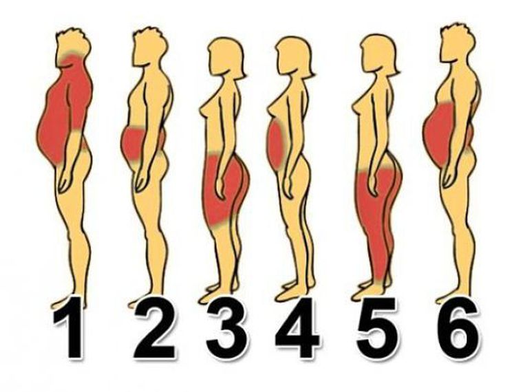 How to lose weight depending on body shape and where the fat is stored