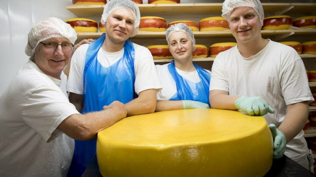 The cheese recently chosen as the tastiest in the world