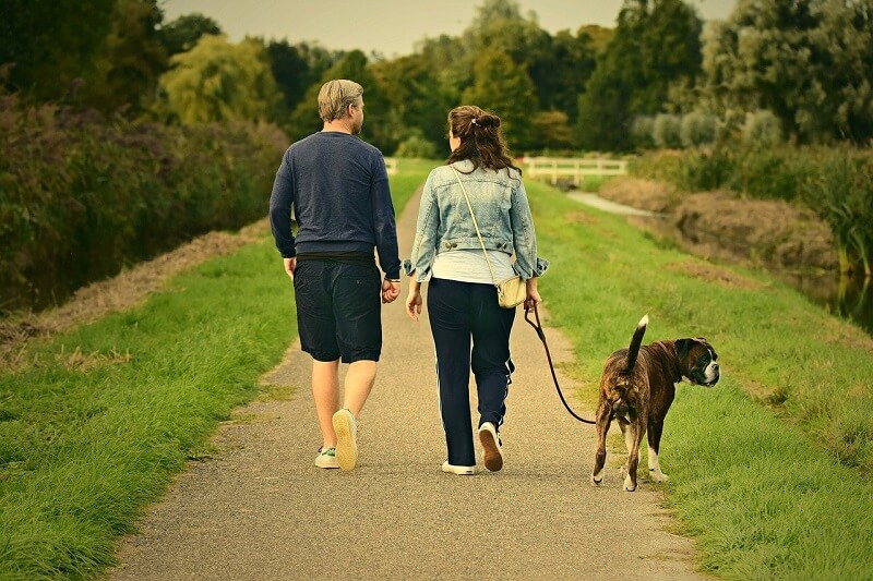 15 minutes of daily walking may create a radical change in your body