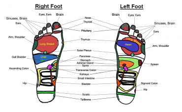 Reflexology-Feet.png