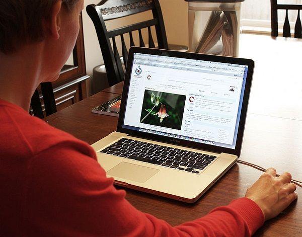 Woman_using_computer.jpg