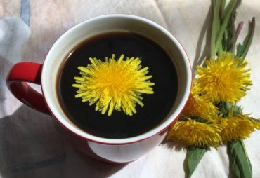 dandelion-coffee3.jpg