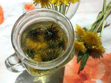 dandelion-tea2.jpg