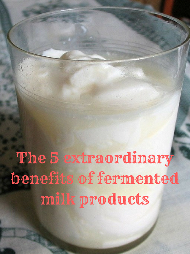 fermented-milk.png