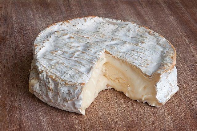 moldy-cheese.jpg