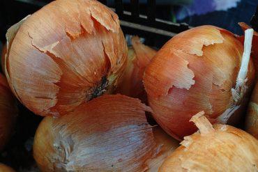 onion-skin.jpg