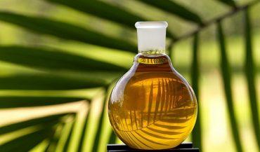 palm-oil.jpg