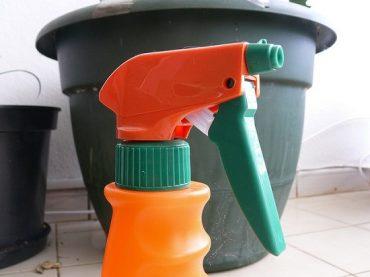 spraying-plants.jpg