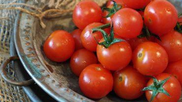 tomatoes-2559809_1920.jpg